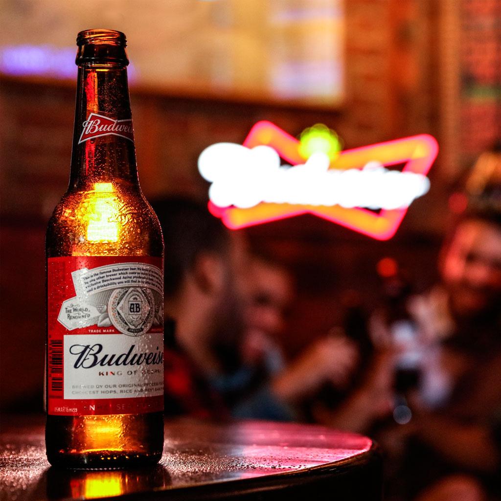 Buweiser Tienda de campa/ña Infantil Tienda de ensue/ño sue/ño m/ágico Invierno pa/ís de Las Maravillas Plegable Regalo de los ni/ños